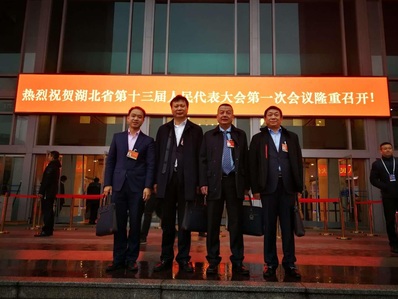 董事长陈新参加湖北省第十三届人民代表大会